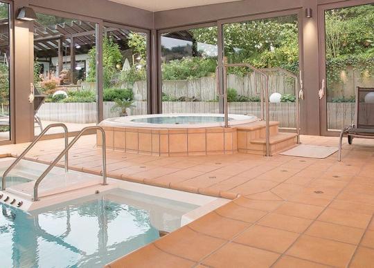 Oblíbená dlažba pro okolí bazénů - Aldonza.
